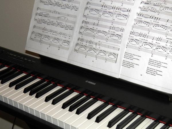 Как научиться играть на пианино самостоятельно с нуля дома?